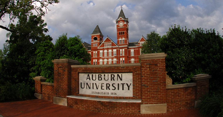 Auburn University Online Master's Degree in Accounting