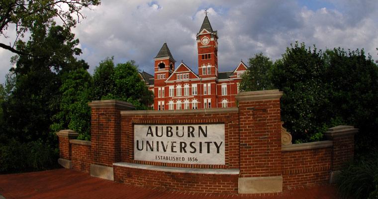 Auburn University Online Master's Degree in Accounting