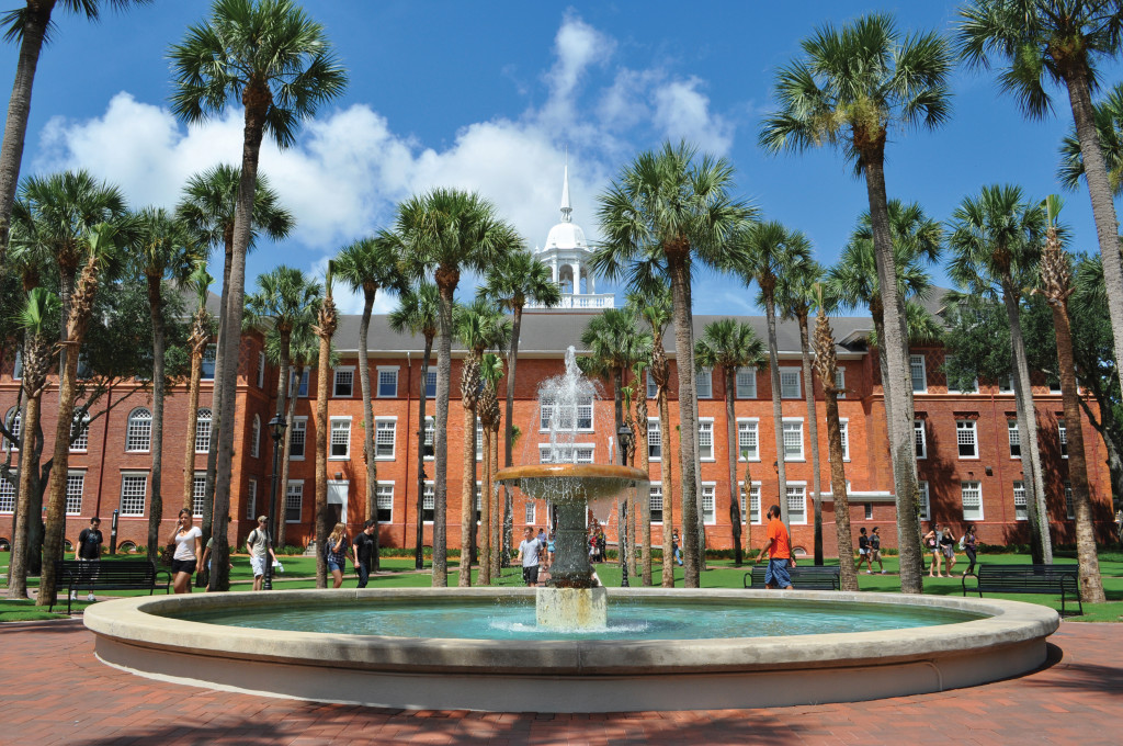 Stetson University Online Master's Degree in Accounting
