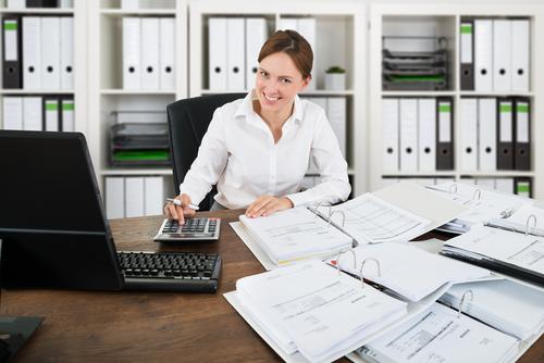 Chartered Accountant Skills